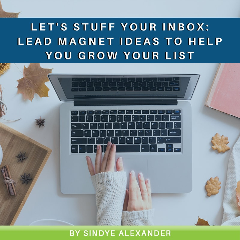 Read more about the article Let's Stuff your Inbox: Lead Magnet Ideas to Help You Grow Your List
